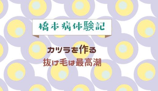 橋本病体験記4 ~かつらを作る。抜け毛は最高潮~