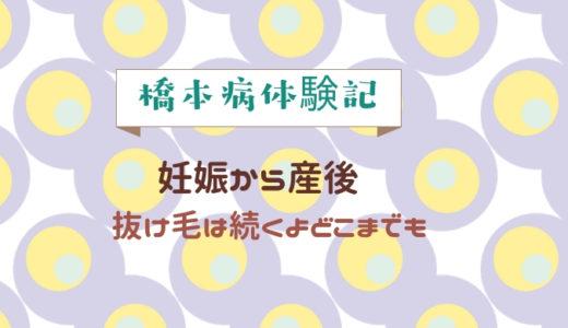 橋本病体験記3 ~妊娠から産後 抜け毛はつづくよどこまでも~