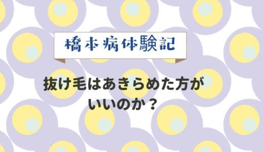 【橋本病体験記】ただいまの経過・・抜け毛はあきらめた方がいいのか?